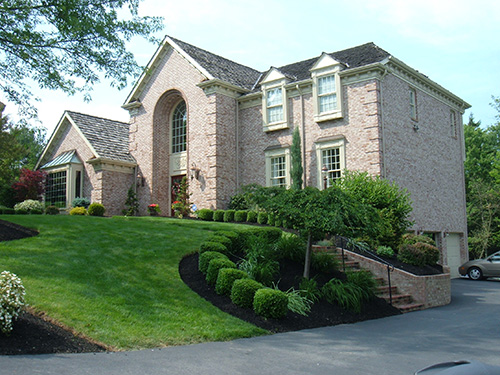 Driveway and Front Yard Landscape